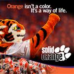 SolidOrange's Avatar