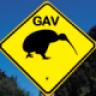 gavkiwi