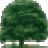 WoodlawnTom