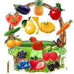 Logo-512.png