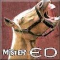 MisterEd51