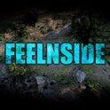 Feelnside