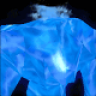 BlueCarbon